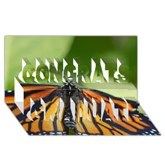 Butterfly 3 Congrats Graduate 3d Greeting Card (8x4)