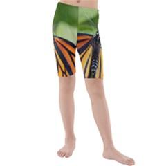 Butterfly 3 Kid s swimwear