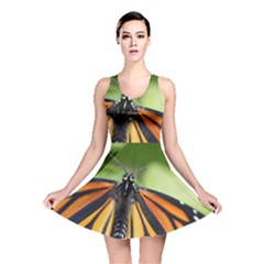 Butterfly 3 Reversible Skater Dresses