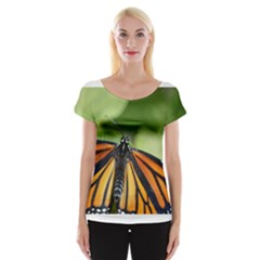 Butterfly 3 Women s Cap Sleeve Top