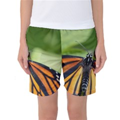 Butterfly 3 Women s Basketball Shorts