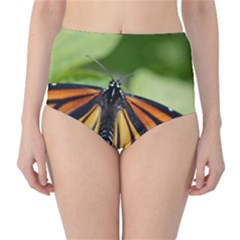 Butterfly 3 High Waist Bikini Bottoms