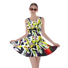 Digitally Enhanced Flower Skater Dresses