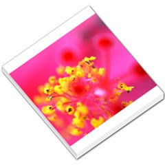 Bright Pink Hibiscus Small Memo Pads