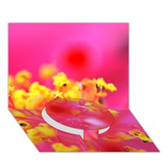 Bright Pink Hibiscus Circle Bottom 3D Greeting Card (7x5)