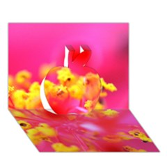 Bright Pink Hibiscus Apple 3d Greeting Card (7x5)