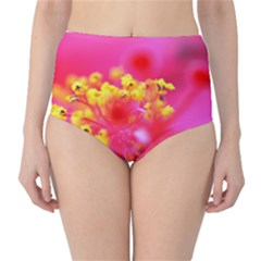 Bright Pink Hibiscus High-Waist Bikini Bottoms