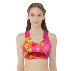 Bright Pink Hibiscus Women s Sports Bra With Border