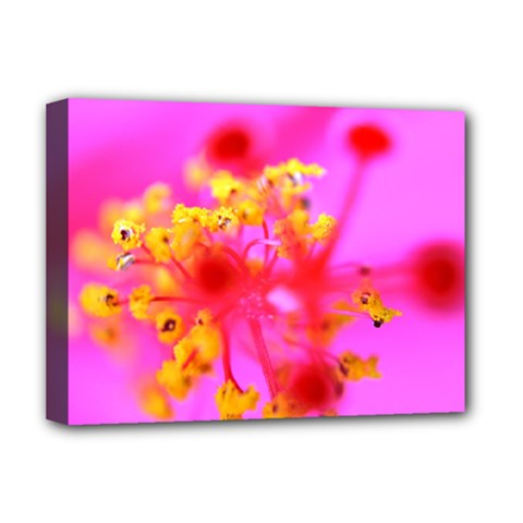 Bright Pink Hibiscus 2 Deluxe Canvas 16  X 12