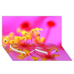 Bright Pink Hibiscus 2 Twin Heart Bottom 3D Greeting Card (8x4)