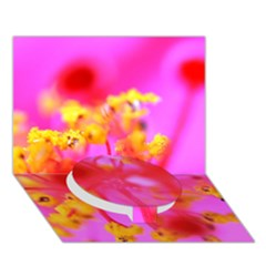 Bright Pink Hibiscus 2 Circle Bottom 3d Greeting Card (7x5)