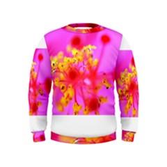 Bright Pink Hibiscus 2 Boys  Sweatshirts