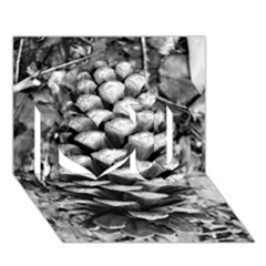 Pinecone Spiral I Love You 3d Greeting Card (7x5)