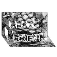 Pinecone Spiral Best Friends 3d Greeting Card (8x4)