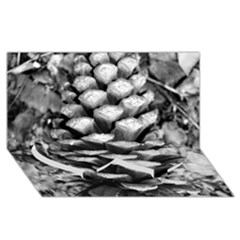 Pinecone Spiral Twin Heart Bottom 3D Greeting Card (8x4)