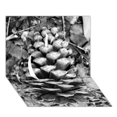 Pinecone Spiral Apple 3d Greeting Card (7x5)
