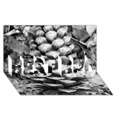 Pinecone Spiral Best Bro 3d Greeting Card (8x4)