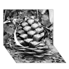 Pinecone Spiral Circle 3D Greeting Card (7x5)