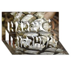 Pincone Spiral #2 Happy Birthday 3D Greeting Card (8x4)
