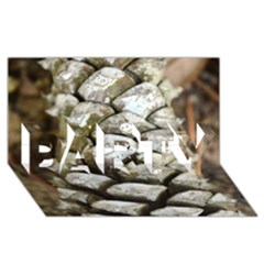 Pincone Spiral #2 PARTY 3D Greeting Card (8x4)