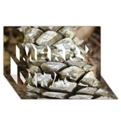Pincone Spiral #2 Merry Xmas 3D Greeting Card (8x4)