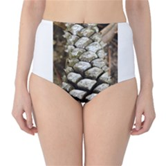 Pincone Spiral #2 High Waist Bikini Bottoms