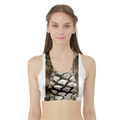 Pincone Spiral #2 Women s Sports Bra With Border