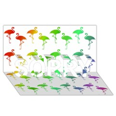 Flamingo Pattern Rainbow  SORRY 3D Greeting Card (8x4)
