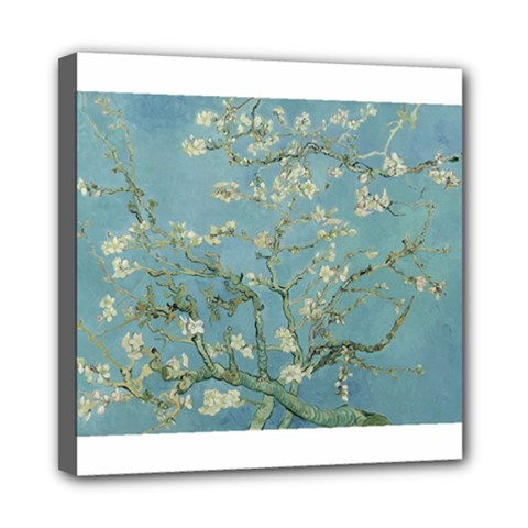 Almond Blossom Tree Mini Canvas 8  X 8