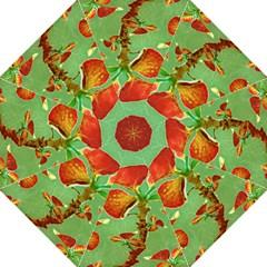 Tropical Floral Print Hook Handle Umbrellas (Medium)