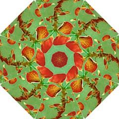 Tropical Floral Print Hook Handle Umbrellas (Small)