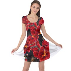 REd Orchids Cap Sleeve Dresses