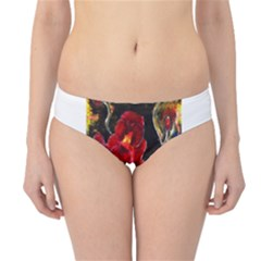 REd Orchids Hipster Bikini Bottoms
