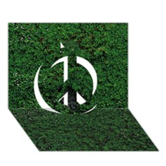 Green Moss Peace Sign 3d Greeting Card (7x5)