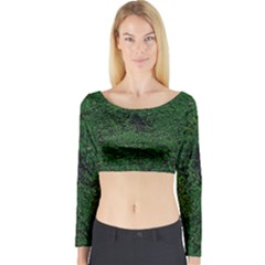 Green Moss Long Sleeve Crop Top