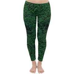 Green Moss Winter Leggings