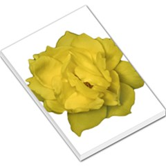 Isolated Yellow Rose Photo Large Memo Pads