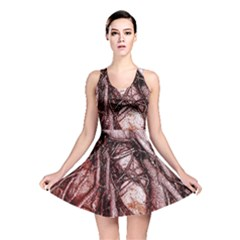 The Bleeding Tree Reversible Skater Dresses