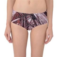 The Bleeding Tree Mid-Waist Bikini Bottoms