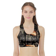Change Women s Sports Bra with Border