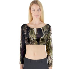 A Deeper Look Long Sleeve Crop Top
