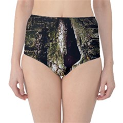 A Deeper Look High-Waist Bikini Bottoms