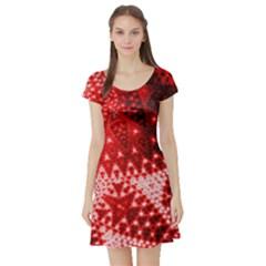 Red Fractal Lace Short Sleeve Skater Dress