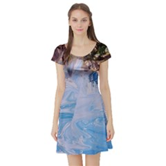 Splash 4 Short Sleeve Skater Dresses