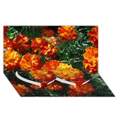 Tagetes Twin Heart Bottom 3D Greeting Card (8x4)