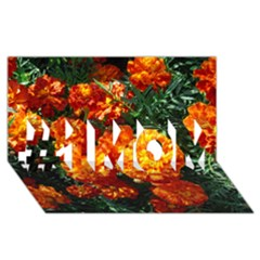 Tagetes #1 MOM 3D Greeting Cards (8x4)