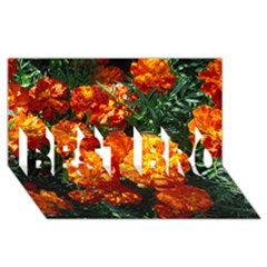 Tagetes BEST BRO 3D Greeting Card (8x4)