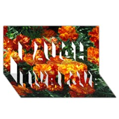 Tagetes Laugh Live Love 3D Greeting Card (8x4)