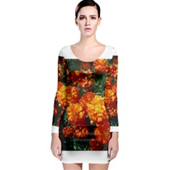Tagetes Long Sleeve Bodycon Dresses