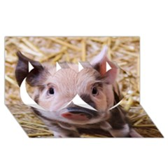 Sweet Piglet Twin Hearts 3D Greeting Card (8x4)
